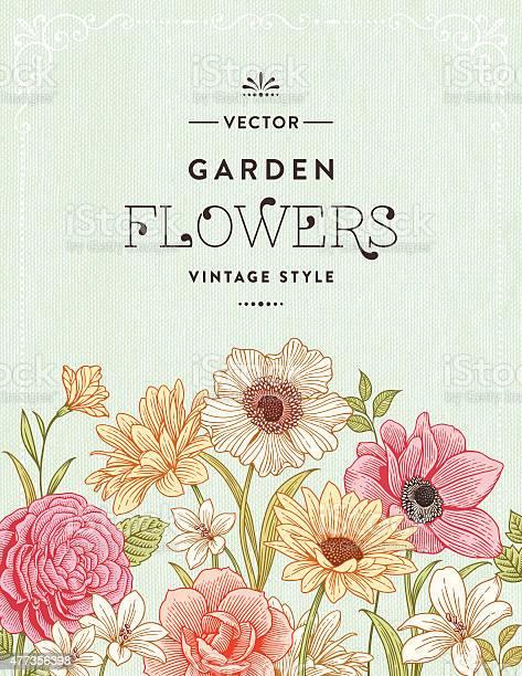 Vintage floral frame vector id477356398?b=1&k=6&m=477356398&s=612x612&h=ofgakc cbhifursfrupr6bqxcvjlyd78x9wzqmabmrw=