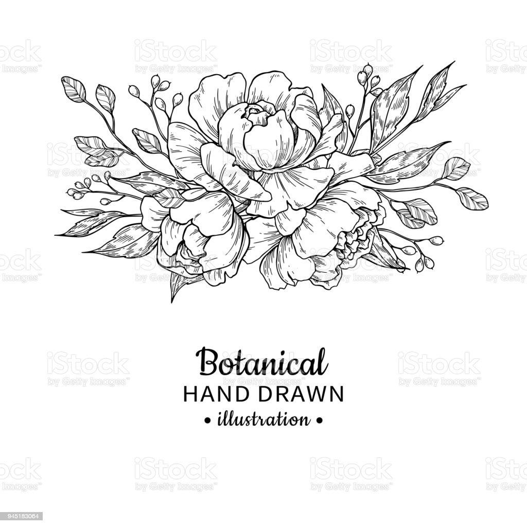 Bouquet De Fleurs Vintage Dessin Vectoriel Pivoine Rose Feuilles Et