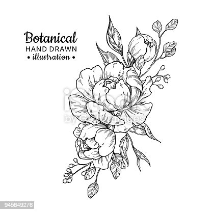 Free Flower Bouquet Black And White, Download Free Clip Art, Free Clip Art  on Clipart Library