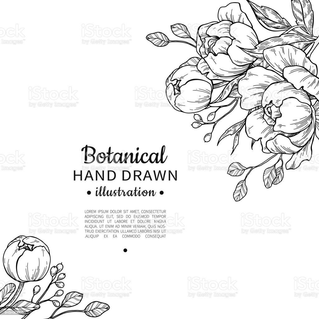 Vintage bloem vector frame tekenen. Pioenroos, roos, bladeren en ber - Royalty-free Apporteren vectorkunst