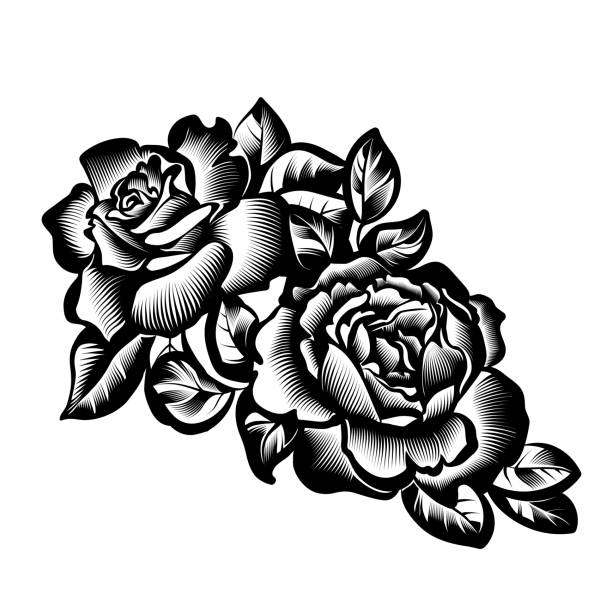 vintage flowers roses vector vintage black and white branch of roses in the style of engraving flowers tattoos stock illustrations