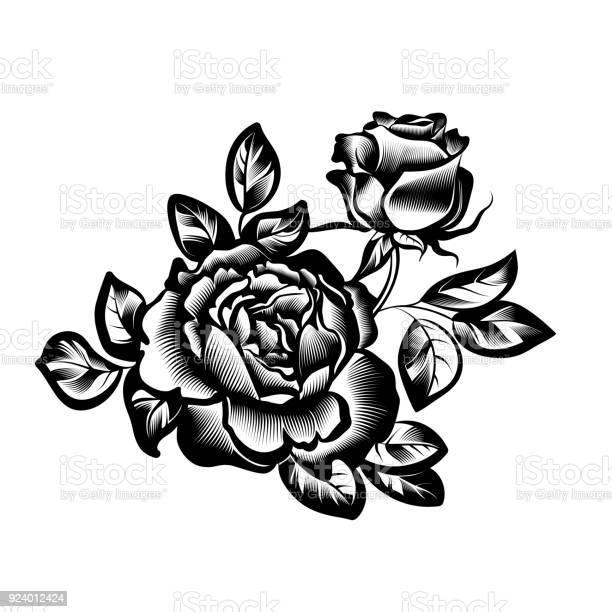Vintage flowers roses vector id924012424?b=1&k=6&m=924012424&s=612x612&h=sbyhx6cctopy2phchgslda9cwzwbm klgugvjwr2eac=