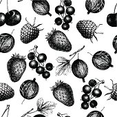 Vector pattern with hand drawn vintage wild and garden berries. Vintage fruit and berry seamless background isolated on white
