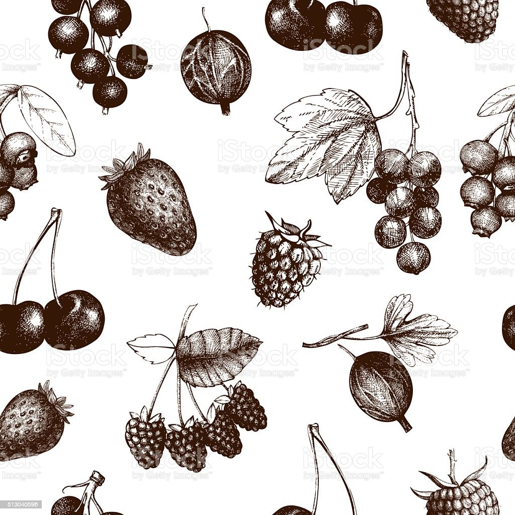 Vintage fruit and berry seamless background vector art illustration
