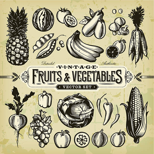 Vintage Fruits & Vegetables Set A collection of black and white, vintage-styled fruit and vegetables set. EPS 10 file, layered & grouped, with meshes and transparencies (shadows & overall effects only). black and white food stock illustrations