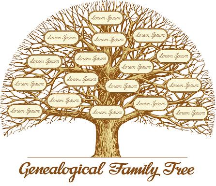 Ilustración de Vintage Genealógico De Árbol Familiar Dibujado A Mano Boceto Ilustración De Vectores y más Vectores Libres de Derechos de ADN