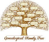 Vintage Genealogical Family Tree. Hand drawn sketch vector illustration