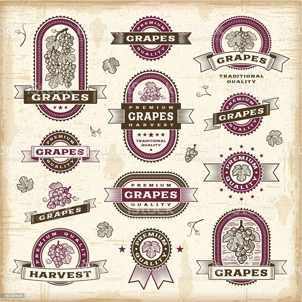 Vintage grapes labels set vector art illustration