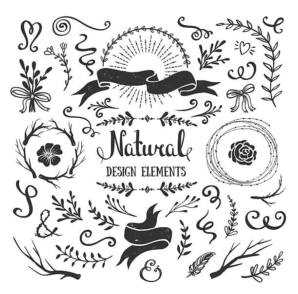 Vintage Graphic Set Of Flowers Branches Leafs Rustic Design Elements Vector Art
