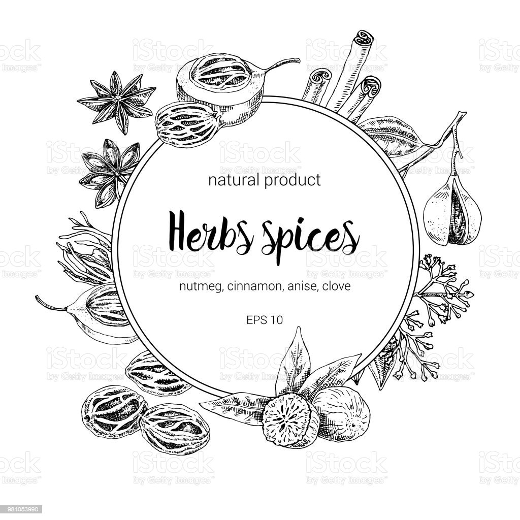 Vintage Graphic Spices Frame Design Vintage Sketchy Style Plants ...
