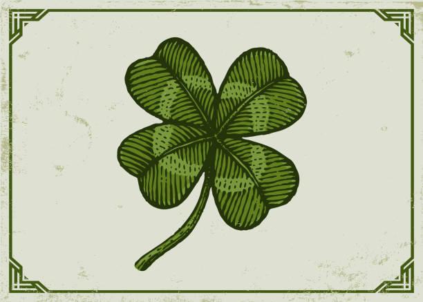 vintage green lucky clover - four seasons stock illustrations