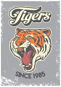 vector of vintage grunge style of college poster of tiger head