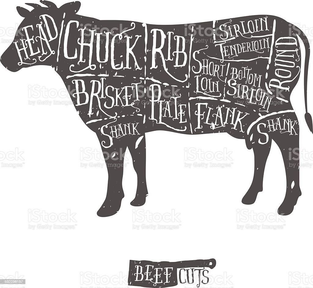 Vintage hand drawn butcher cuts of beef scheme vector art illustration
