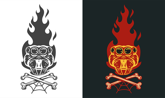 Vintage hand drawn composition with spider head and fire flames isolated on clean background. Design concept for tattoo, print, banner, badge in old school style. Vector illustration.