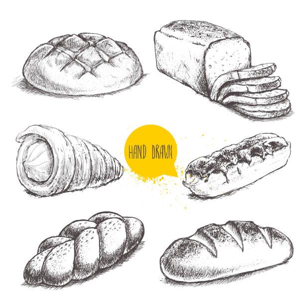 vintage handgezeichnete skizze frische bäckerei stilgruppe. brötchen, creme tube, eclair - brotzopf stock-grafiken, -clipart, -cartoons und -symbole