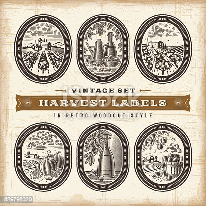 A set of vintage harvest labels in retro woodcut style. Editable EPS10 vector illustration with clipping mask.