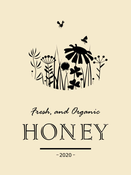 Vintage honey card with bees and flowers Stylish vintage card with bees and doodle flowers . Floral vector illustration. Meadow plants black silhouettes, honey background beekeeper stock illustrations