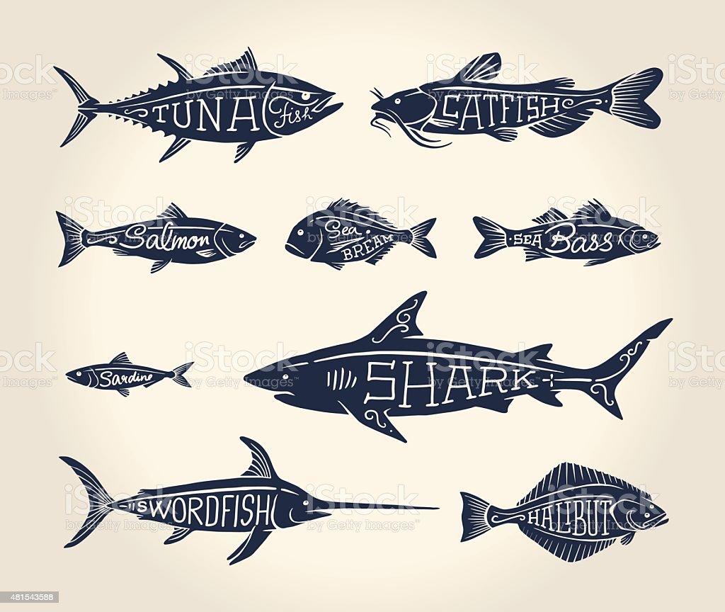 Винтаж иллюстрация рыбы с именами векторная иллюстрация