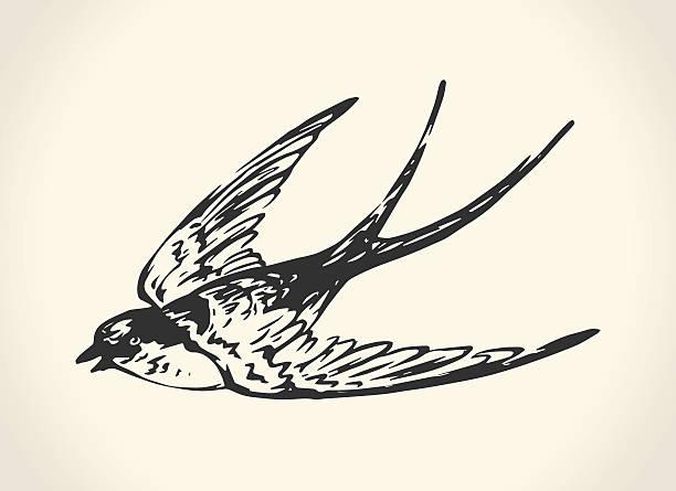 ヴィンテージのイラストツバメ - 鳥のタトゥー点のイラスト素材/クリップアート素材/マンガ素材/アイコン素材