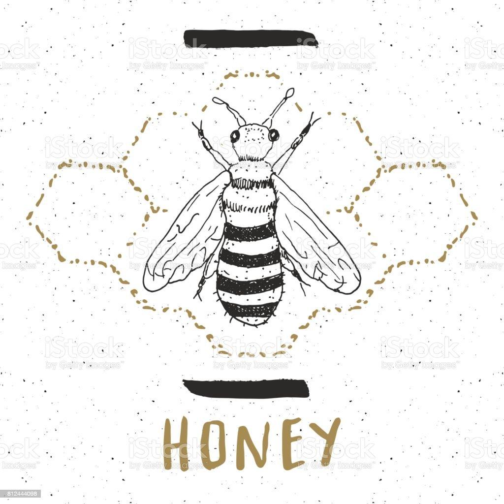 Vintage Label Hand Drawn Bee Grunge Textured Badge Retro