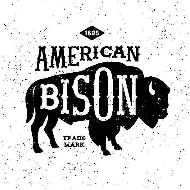 vintage label vintage label American Bison ( T-Shirt Print ) american bison stock illustrations