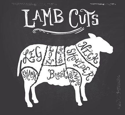Vintage lamb sheep mutton cuts butcher diagram on textured background