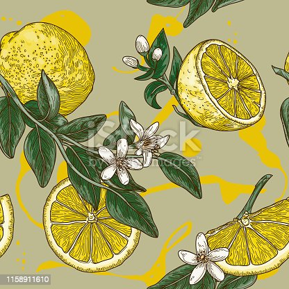 Gorgeous highly detailed line art vintage style seamless lemon pattern with leaves and blossoms. Perfect for fabric, wallpaper or anything that needs a summery flair.