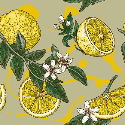 Vintage Lemon Citrus Blossom Seamless Pattern
