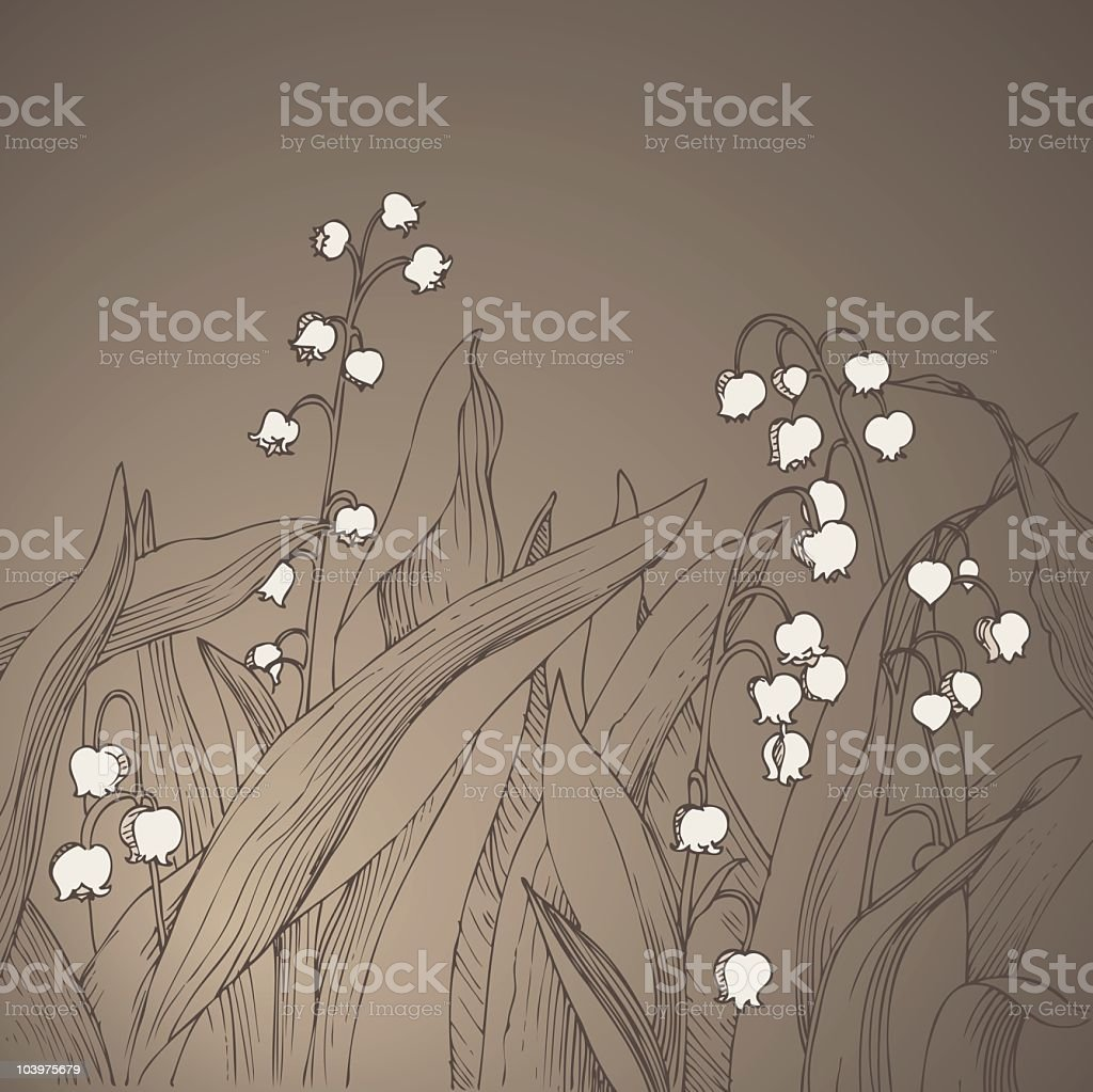 Vintage Lilies of the Valley vector art illustration