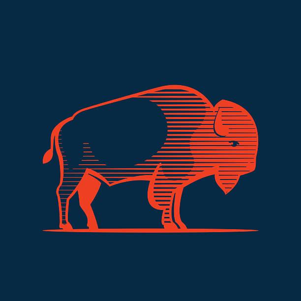 Vintage line Buffalo icon Animal design template elements for your  sport team branding, T-shirt, label, badge, card or illustration. american bison stock illustrations