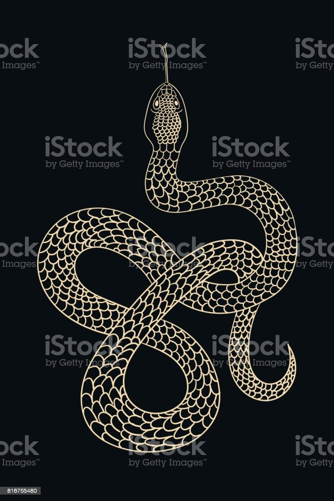 Vintage line snake vector art illustration