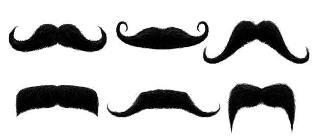 ilustrações, clipart, desenhos animados e ícones de bigode vintage. bigode retro engraçado, bigodes falsificados e bigodes isolados do cabelo curly - bigode