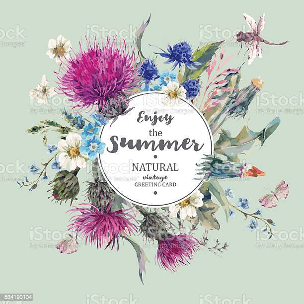 Vintage natural herbal greeting card with blooming meadow flower vector id534190104?b=1&k=6&m=534190104&s=612x612&h=12omkyskwyneypvizpxk oeb3prkzqp7a ku5jcvg7u=