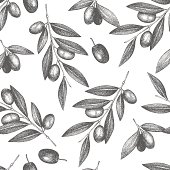 Vector pattern with ink hand drawn olive tree twigs isolated on white. Vintage olive background