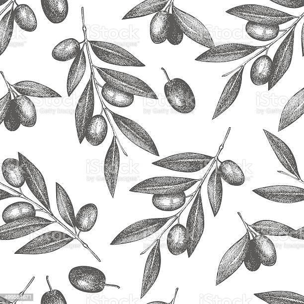 Vintage olive background vector id499584671?b=1&k=6&m=499584671&s=612x612&h=9bk cto0vmzyot9ab3jozjcr9wtwub0u0iifqylol8q=