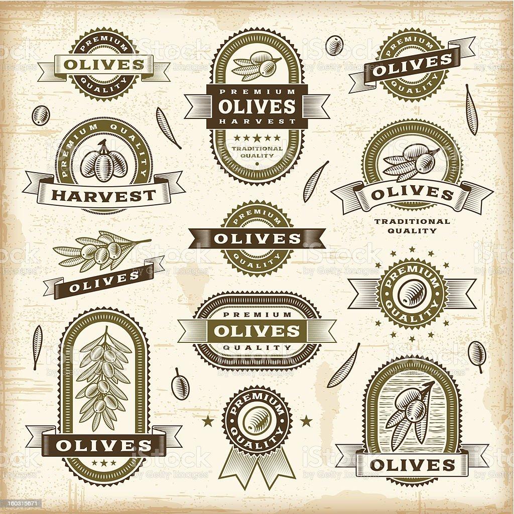 Vintage olive labels set vector art illustration