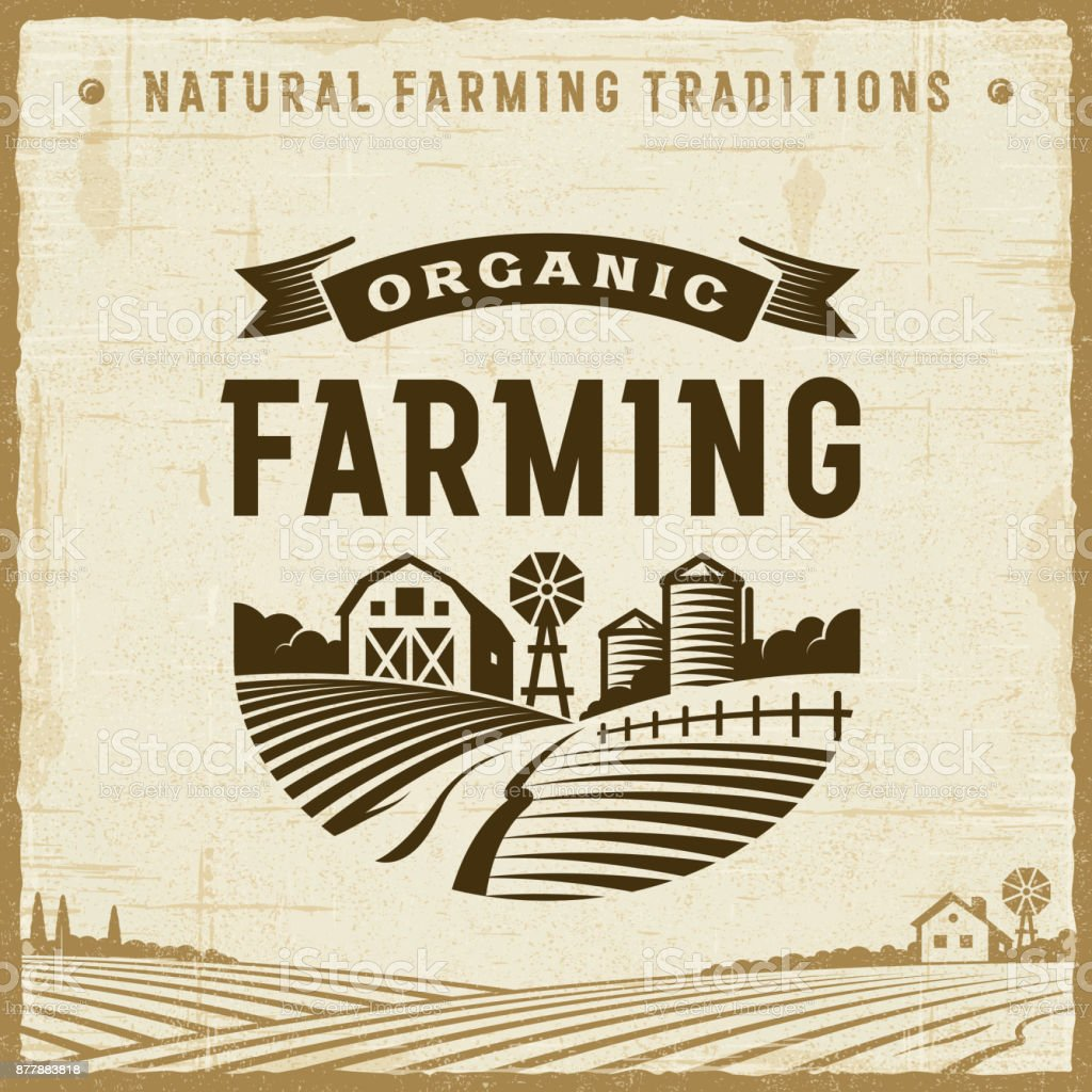 Vintage Organic Farming Label Vintage organic farming label in retro woodcut style. Editable EPS10 vector illustration with clipping mask and transparency. Agricultural Field stock vector