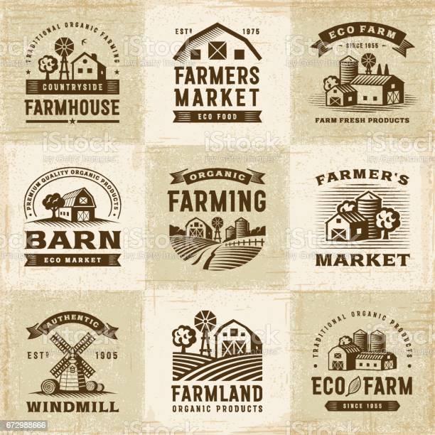 Vintage organic farming labels set vector id672988666?b=1&k=6&m=672988666&s=612x612&h=lg9bwu lwaktll0viuus8iqpprtfhwf3ykrvmjmnunw=