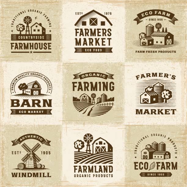 빈티지 라벨 세트 농업 유기 - 농장 stock illustrations