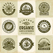 A set of vintage organic labels and badges in retro woodcut style. Editable EPS10 vector illustration with clipping mask and transparency.