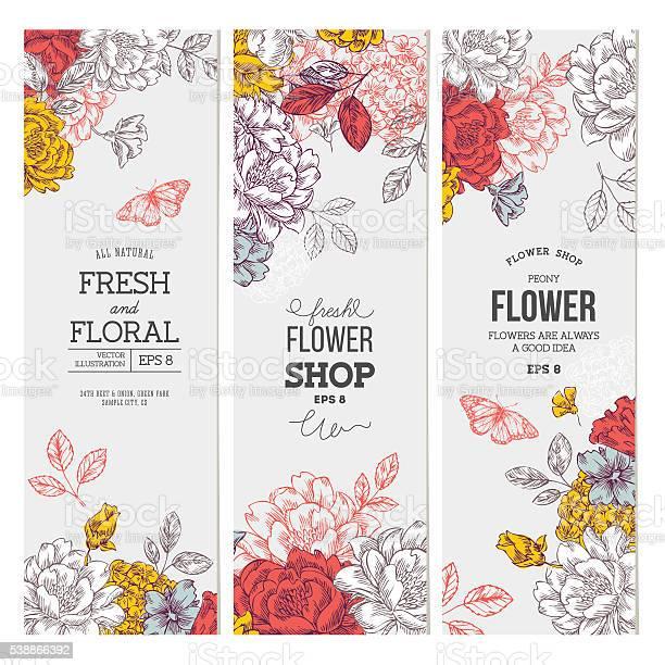 Vintage peony flower banner collection linear graphic floral banner vector id538866392?b=1&k=6&m=538866392&s=612x612&h=dumq8hgkapmjygyrru73p xarh6j2ymjuatrj968f e=