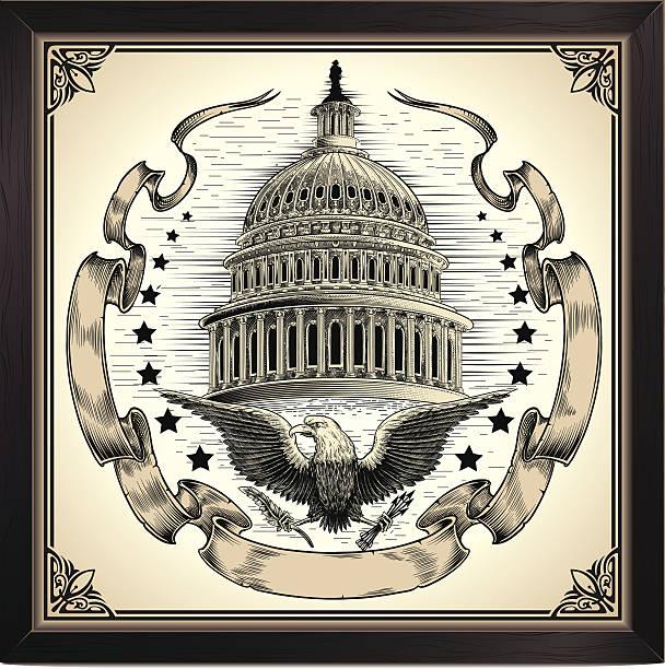 usa. capitol dome - abgeordnetenhaus stock-grafiken, -clipart, -cartoons und -symbole