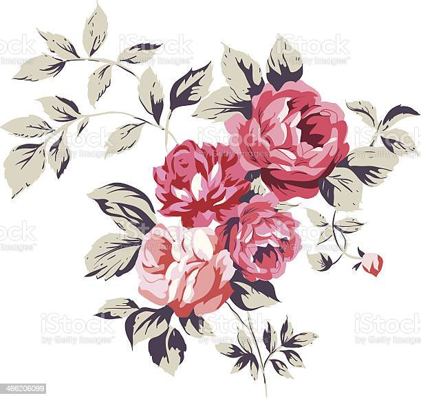 Vintage pink roses vector id466206099?b=1&k=6&m=466206099&s=612x612&h=923i dniw8ztwhdre1f1pungvcgjf8 vziblw8pvqdc=