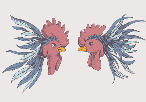Vintage rooster fight
