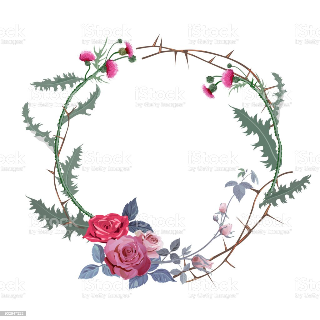 Vintage round frame: thistle, red roses (bouquet, flowers, buds, leaves), prickly branches on white background. Vector illustration, watercolor style. Concept for Halloween. Digital draw. vector art illustration