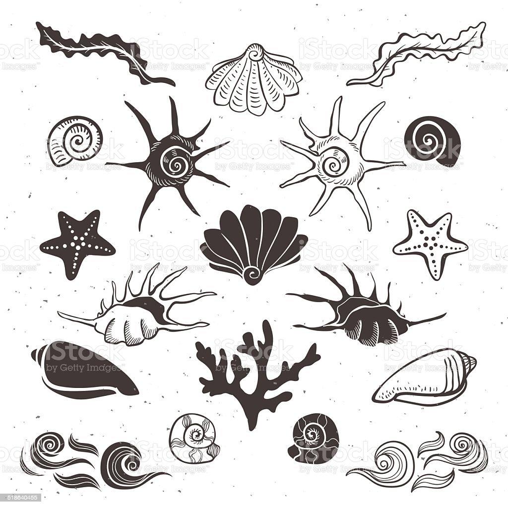Vintage Mare Conchiglie E Stelle Marine Alghe Corallo E Onde