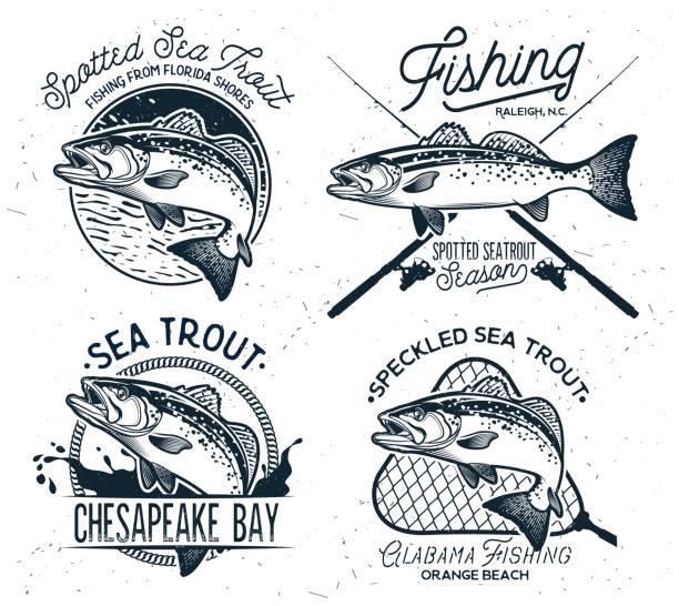 illustrazioni stock, clip art, cartoni animati e icone di tendenza di vintage sea trout fishing emblems, labels and design elements. - trout