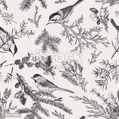 Vintage seamless pattern with birds and winter plants. Winter background. Vector botanical illustration. Black and white.