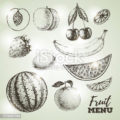 Vintage set of fresh fruits sketch