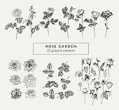 ヴィンテージは、手描きのバラや植物の要素のセット。レトロなグラフィックのコレクションです。